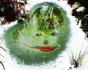 cologne-artist-volker-rauh-pic2000-23 - Kopie